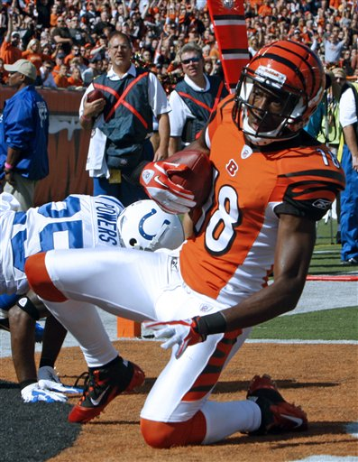 Bengals Rookies Earning TheirStripes
